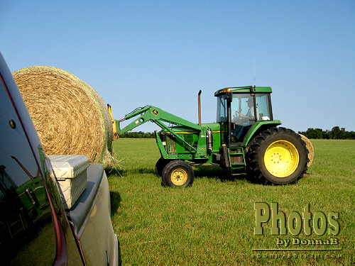 Moving Hay